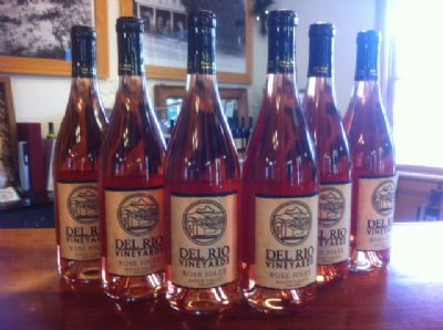 Oregon Wine Month - Rose Jolee