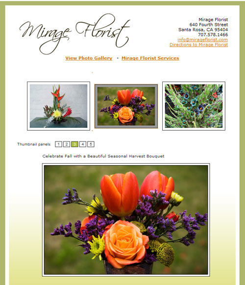 Portfolio : Web Design : Mirage Florist : Kreck Design