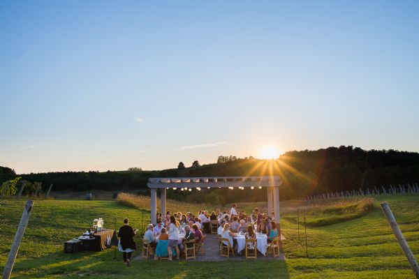 Dinner in the Vines- July 19th