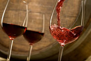 Red Wines Photo