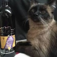 Thumbnail photo for Black Mesa Library & Reserve Wines category