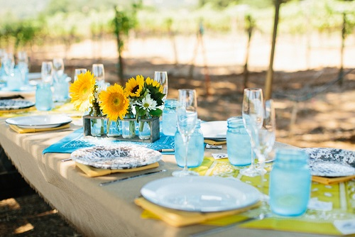 Photo for Birds & Bubbles ~Lunch in the Vineyard (Summer 2019) category