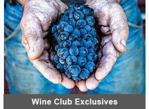 Wine Club Exclusives Photo