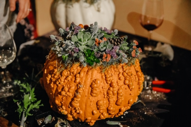 Oct. 10th: Pumpkin Succulent Class Photo